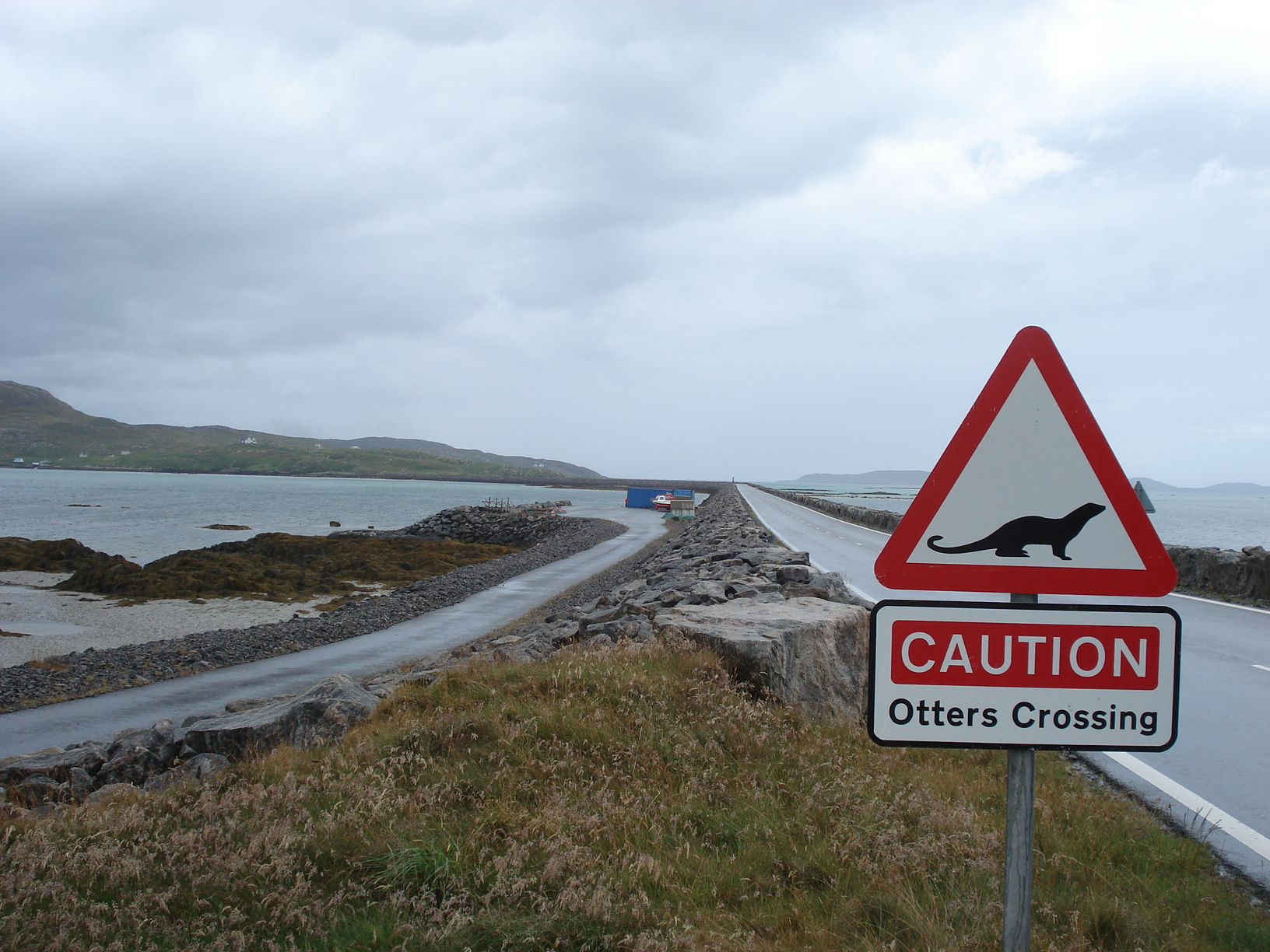 I didn't see any otters. They must have crossed already